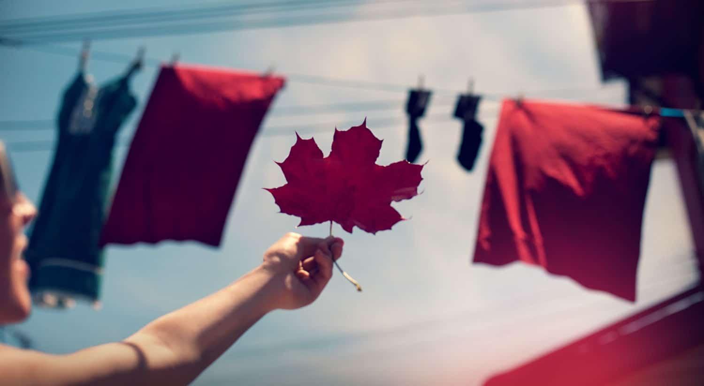 SHAYNE GRAY Happy Canada Day!, photograph, 24 x 36 inches